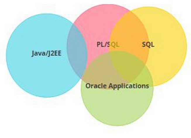Oracle Apps R12 Technical Training